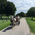 single mit Kind Ferien auf dem Bauernhof in Italien - Kutschfahrt